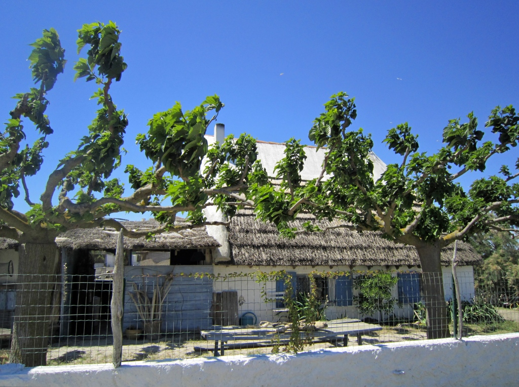 Les Saintes-Maries-de-la-Mer et la Camargue
