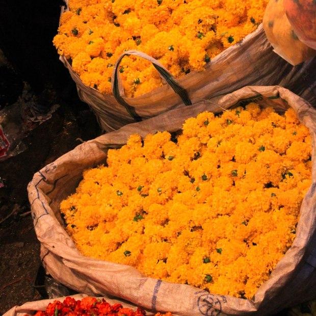 Toujours le chrysanthème, symbole de joie et d'éternité.