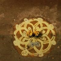 Dessiner et peindre en Inde, du sol au plafond