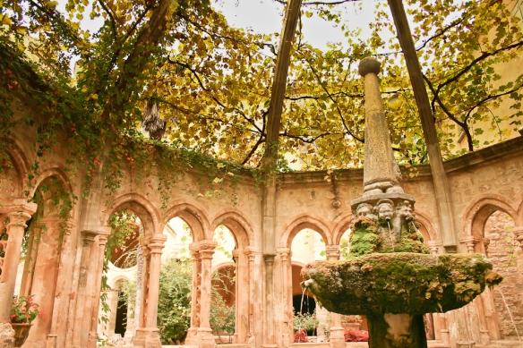 Abbaye Cistercienne Ste Marie de Valmagne (269)-1