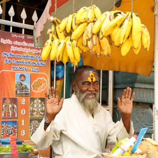 Des bananes pour les offrandes du temple.