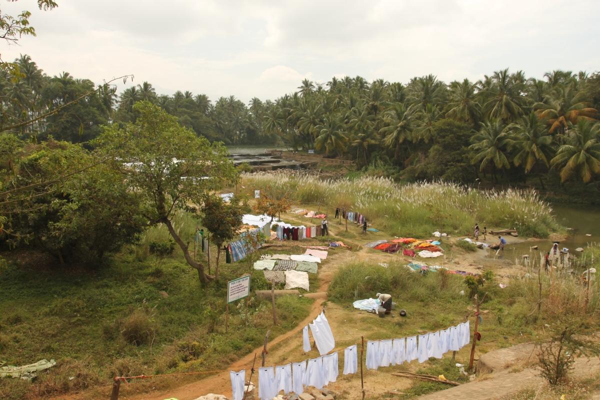 Jour de lessive en Inde, une laverie à ciel ouvert.