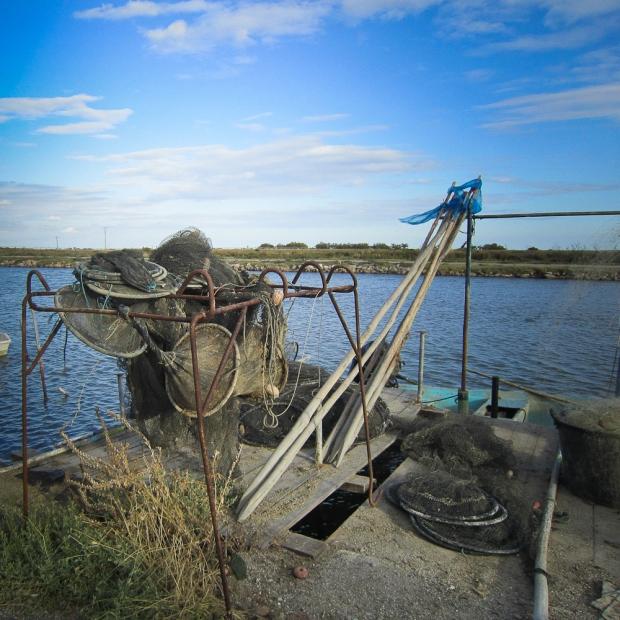 Pêcher à Vic La Gardiole I