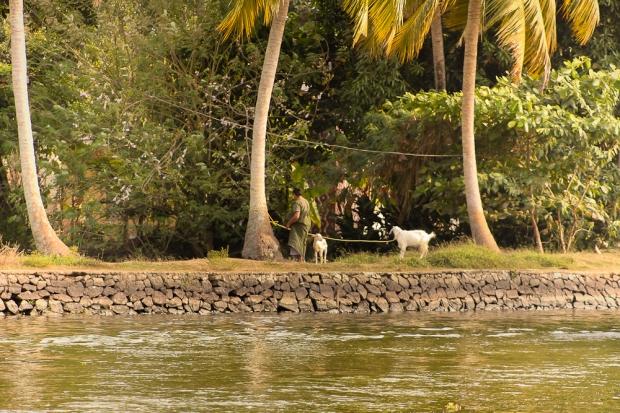 Des gens et des Backwaters IMG_6412-1-2