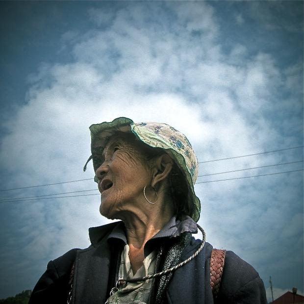 Vietnam 2008. (2135)-1-2 2