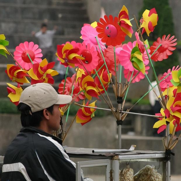 Vietnam 2008. (2172)-1