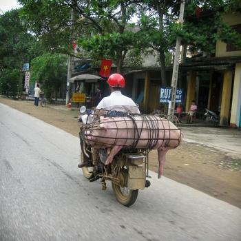 Vietnam 2008. (2581)-1
