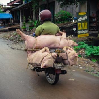 Vietnam 2008. (2951)-1