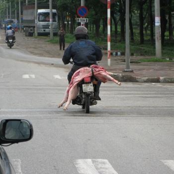 Vietnam 2008. (2976)-1