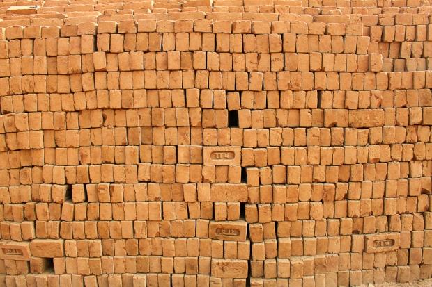 Dans une briqueterie en Inde,  IMG_9479-1
