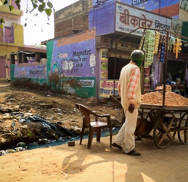 Delhi IMG_8685-1-1