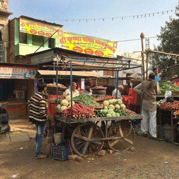 Delhi IMG_8699-1-1