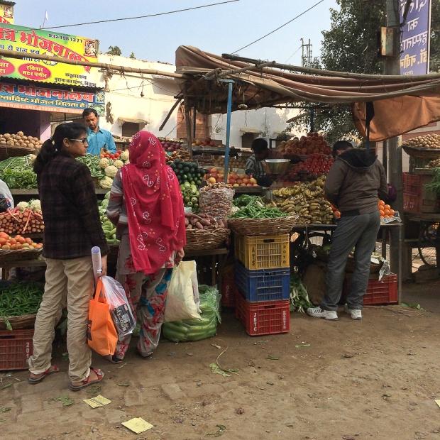 Delhi IMG_8700-1-1