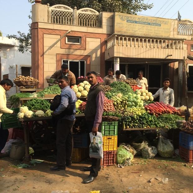 Delhi IMG_8703-1