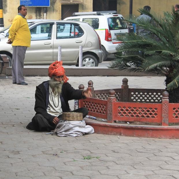 Delhi Le charmeur de serpent