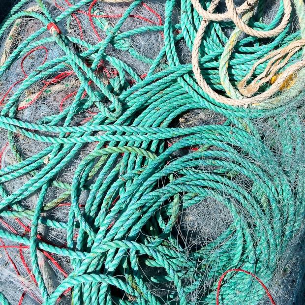 Filets de pêche IMG_2132-1-1