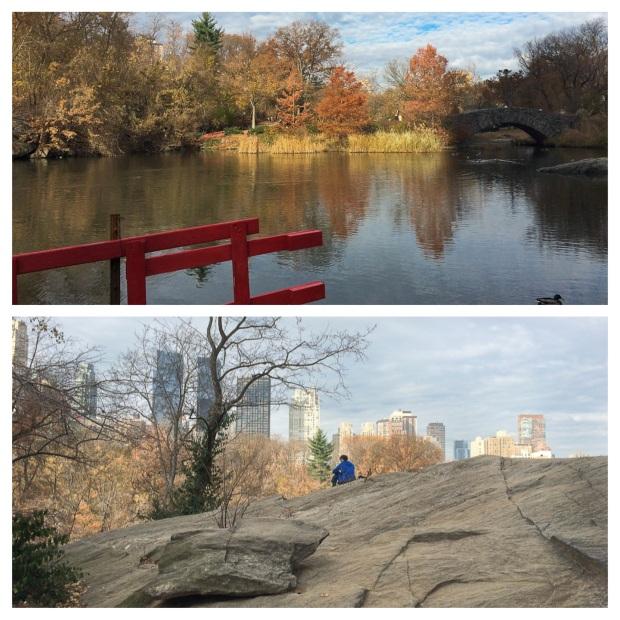 Central Park 14