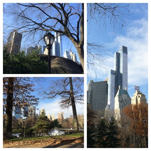 Central Park 8