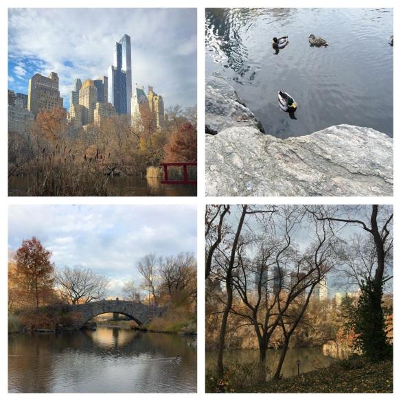 Central Park 9