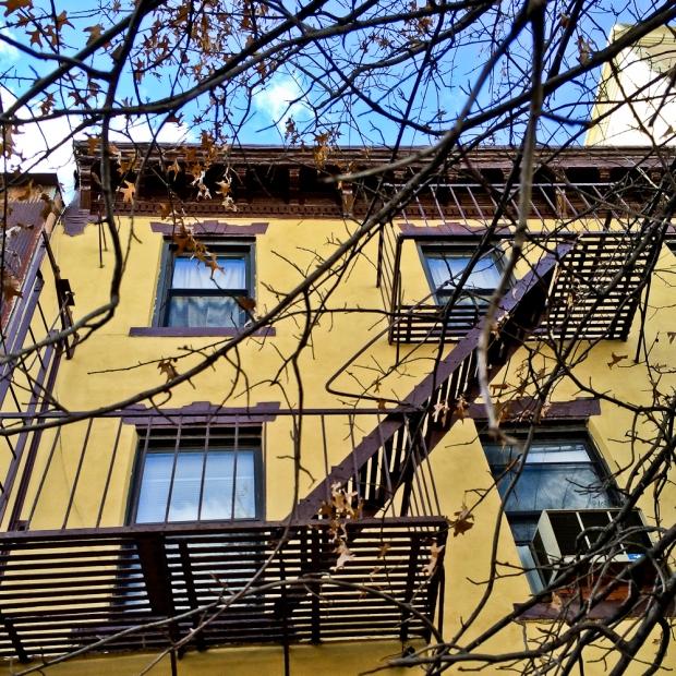 IMG_4823-1.Brooklyn