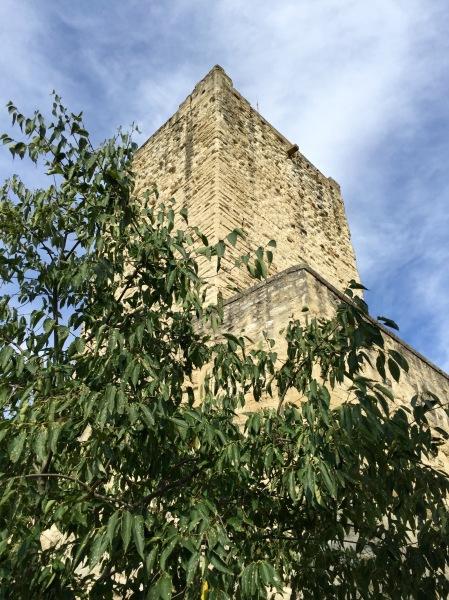 Château de Sommières IMG_1374 (1)