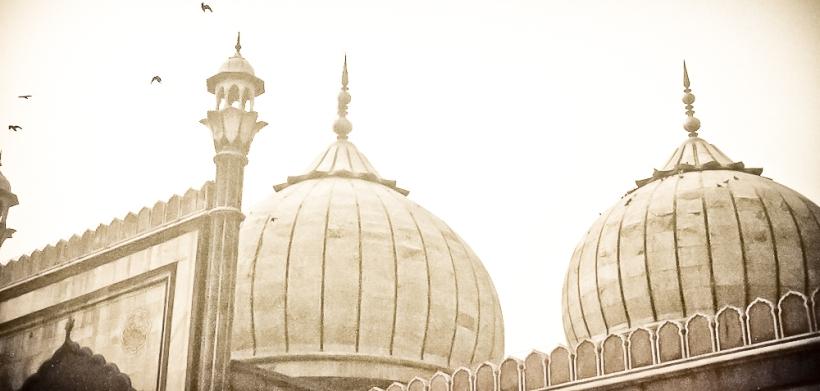 Mosquée de Delhi  IMG_9248-1-1