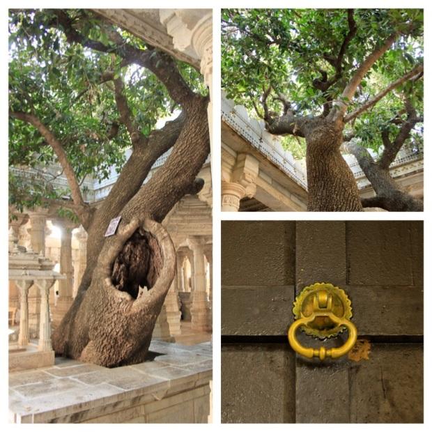 Temple d'Adinath 3