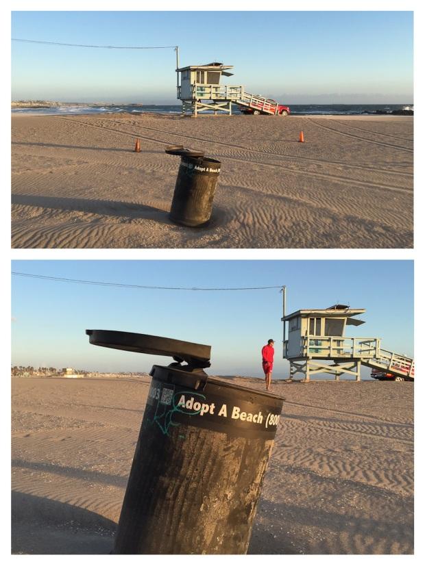 Aux Etats Unis on peut adopter une plage ou une autoroute...Tant qu'à faire, j'adopte la plage...