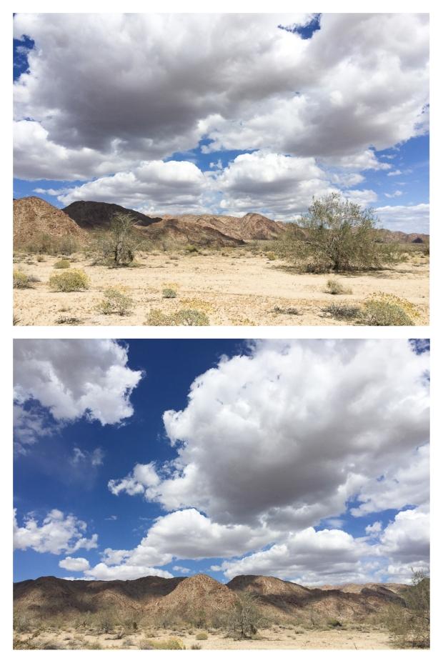 Desert Center 4