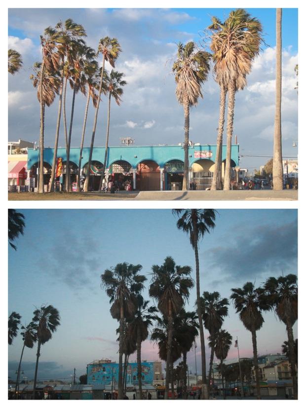 Venice Beach Plage 4