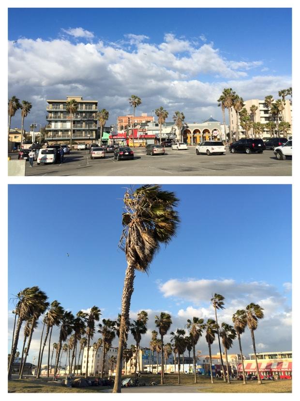 Venice Beach Plage 6