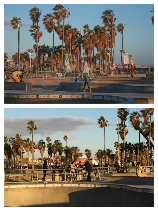 Venice Beach Skaters 1