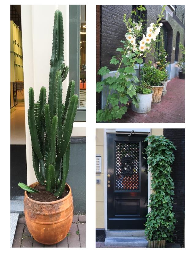 amsterdam-fleurs-12