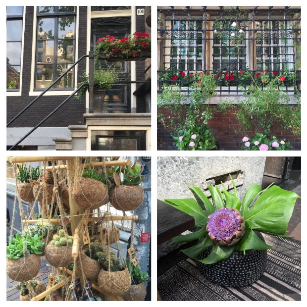 amsterdam-fleurs-3