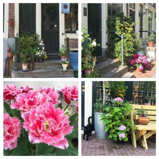 amsterdam-fleurs-4