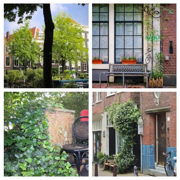 amsterdam-fleurs-6