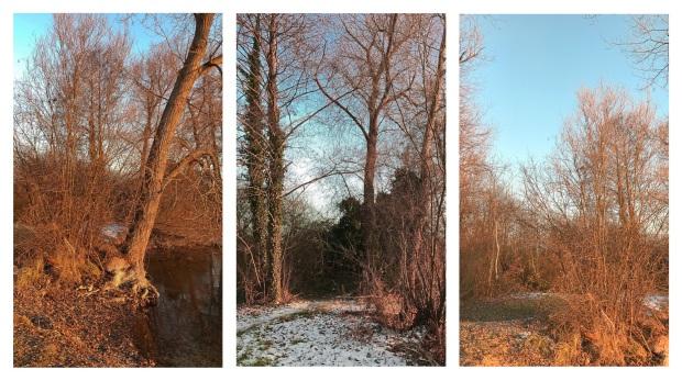 hiver-en-alsace-14