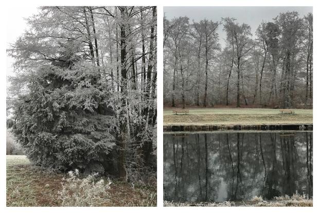 winter-10