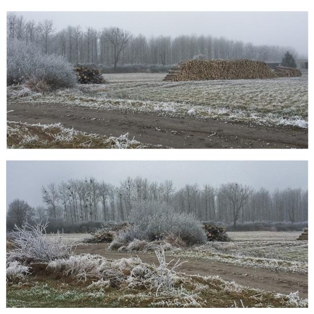 winter-13