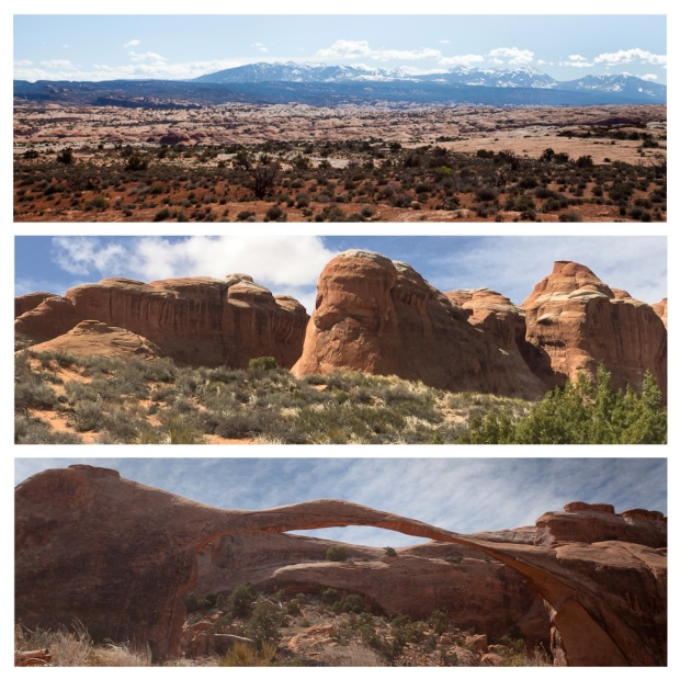 Arches National Park 24.jpg