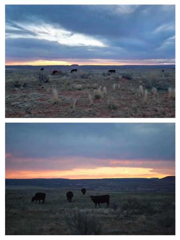 Canyonlands 6.jpg