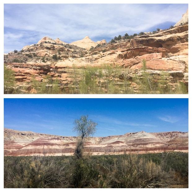 De Moab à Torrey 5.jpg
