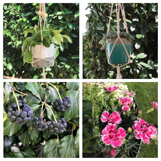 Garden Printemps 2017 4.jpg