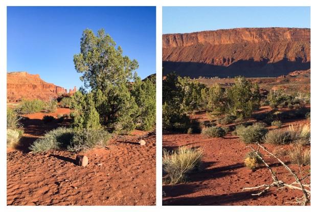 Moab Red 2.jpg