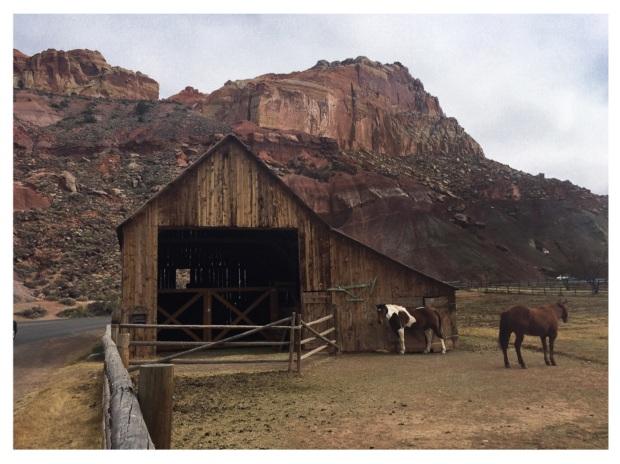 Ranch Torrey.jpg