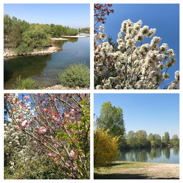 Springtime 5.jpg