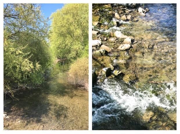 Springtime River 1.jpg