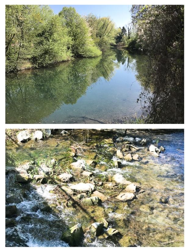 Springtime River 2.jpg