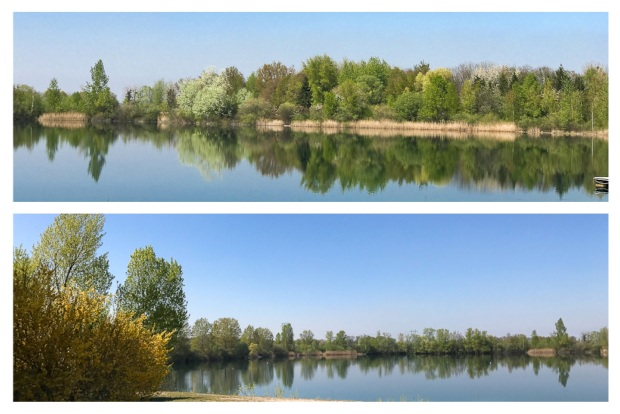 Springtime River 6.jpg