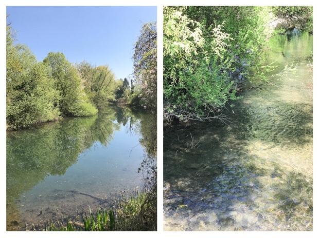 Springtime River.jpg